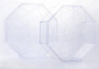 Octangular